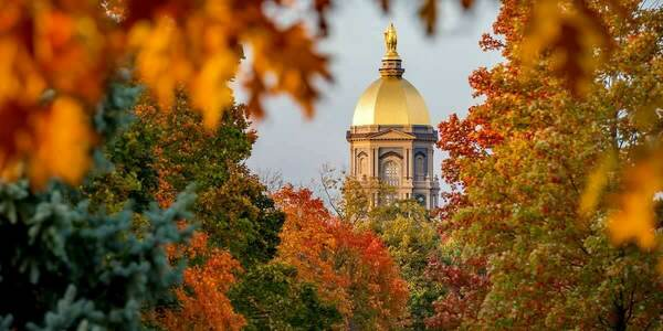 A view of the Main building through fall colored leaves